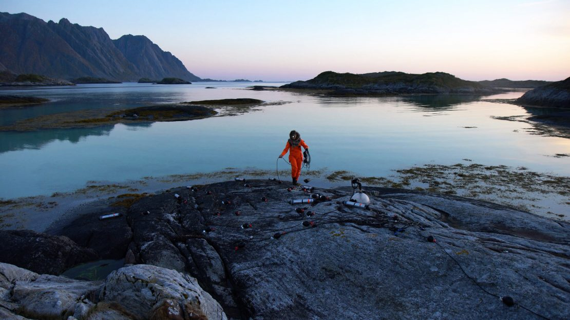 Ursula Biemann Acoustic Ocean, 2018